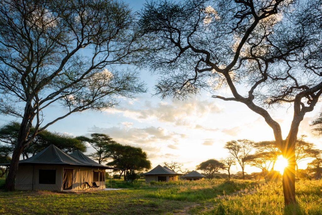 Topguides Bush Camps