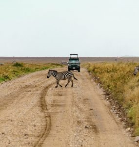 Trails of Africa Tours and Safaris